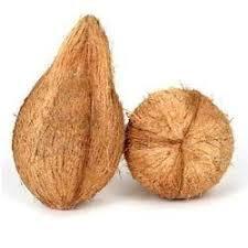 Coconut /Thenga